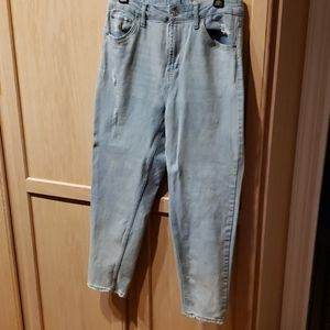 NWOT Wild Fable jeans